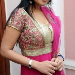 nikitha-hot-stills (9)